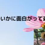 美紀子の地球の遊び方(大人の自由研究作戦会議より)